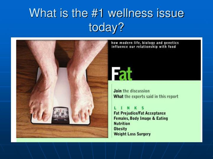 What is the #1 wellness issue today?