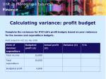 calculating variance profit budget