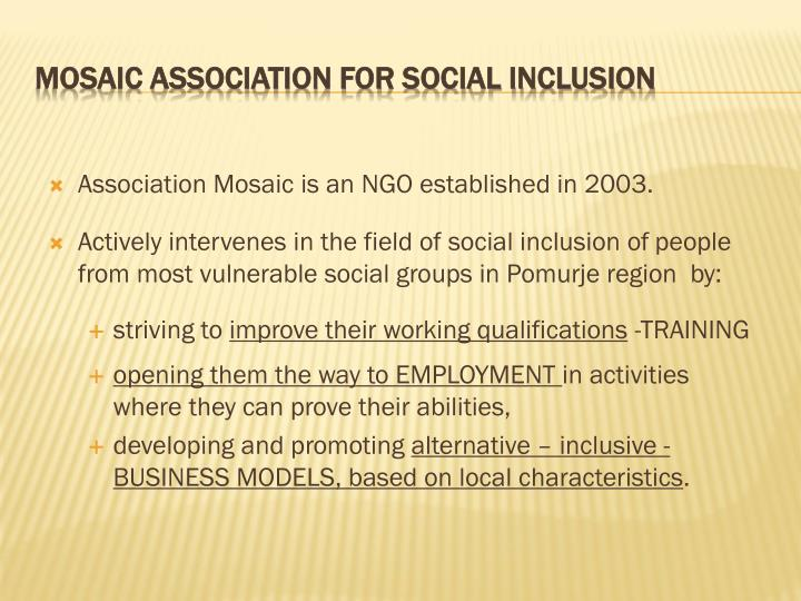 Mosaic association for social inclusion