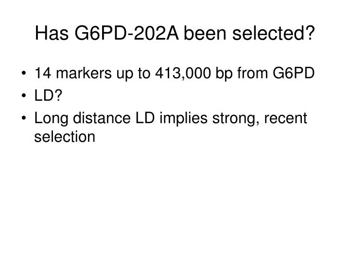 Has G6PD-202A been selected?