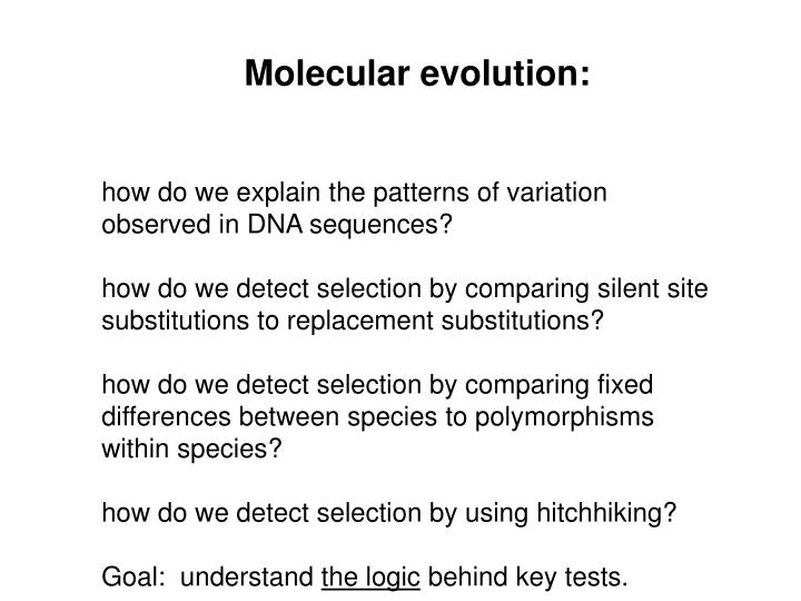 Molecular evolution: