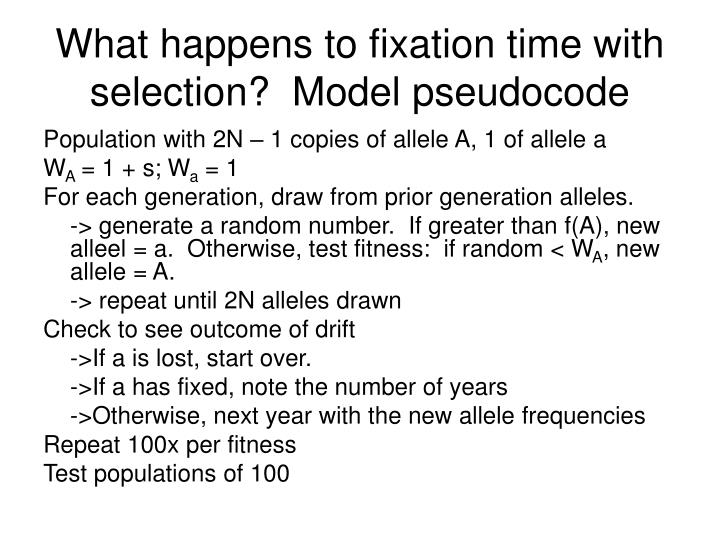 What happens to fixation time with selection?  Model pseudocode
