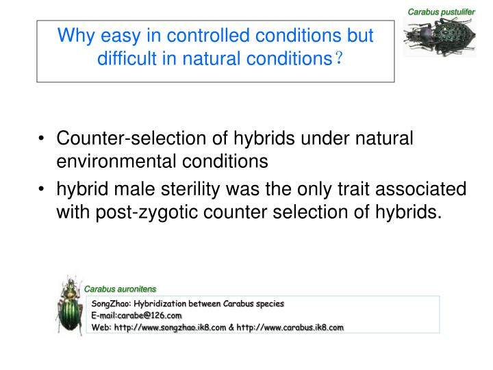 Why easy in controlled conditions but difficult in natural conditions