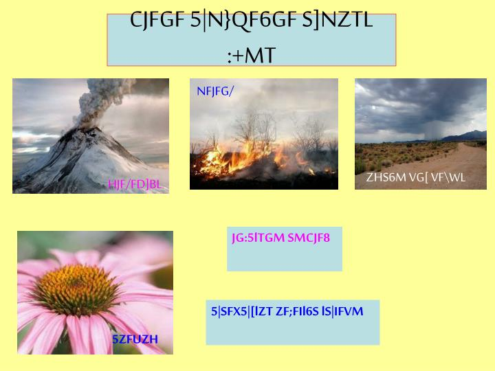 CJFGF 5|N}QF6GF S]NZTL :+MT