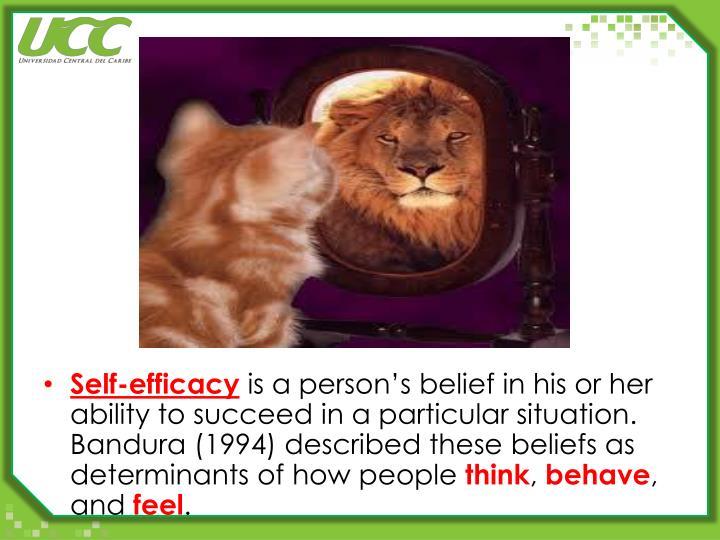 Self-efficacy
