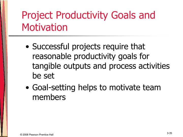 Project Productivity Goals and Motivation