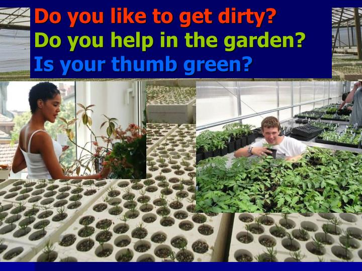 Do you like to get dirty?