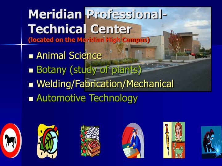 Meridian Professional-