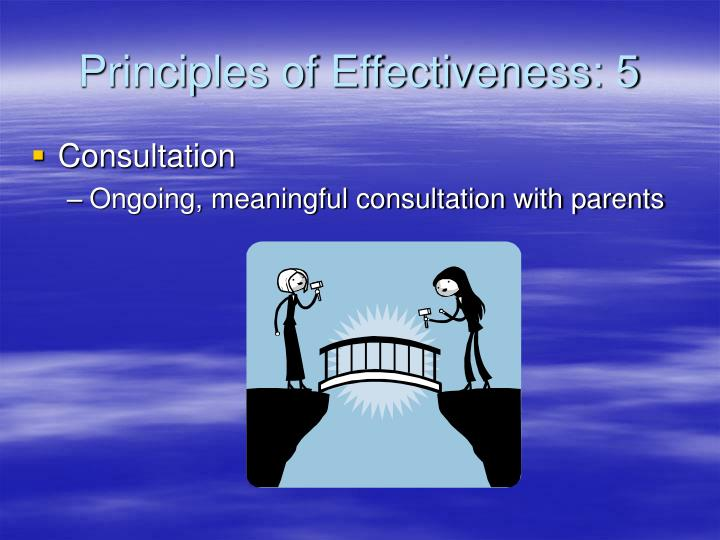 Principles of Effectiveness: 5