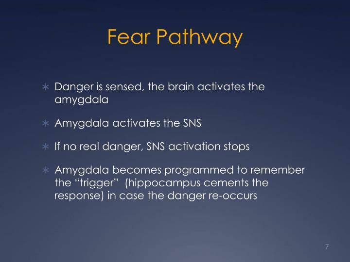 Fear Pathway