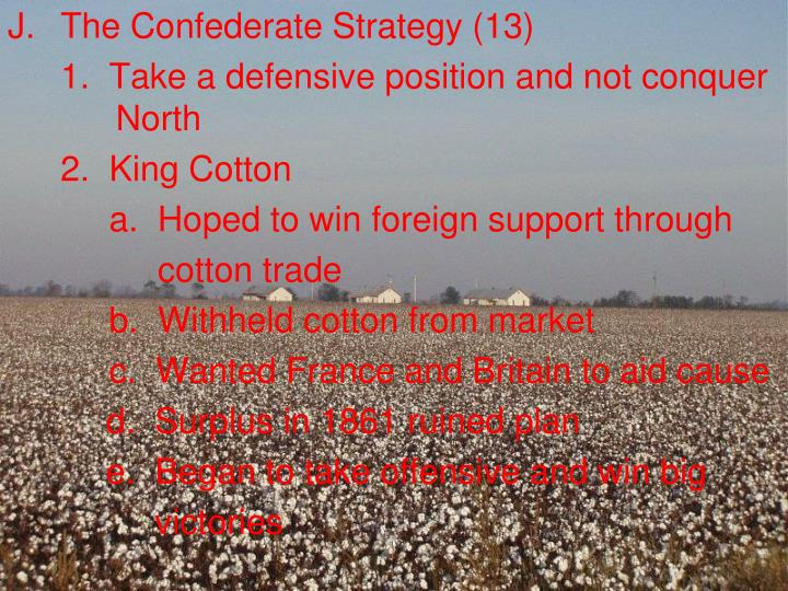 The Confederate Strategy (13)
