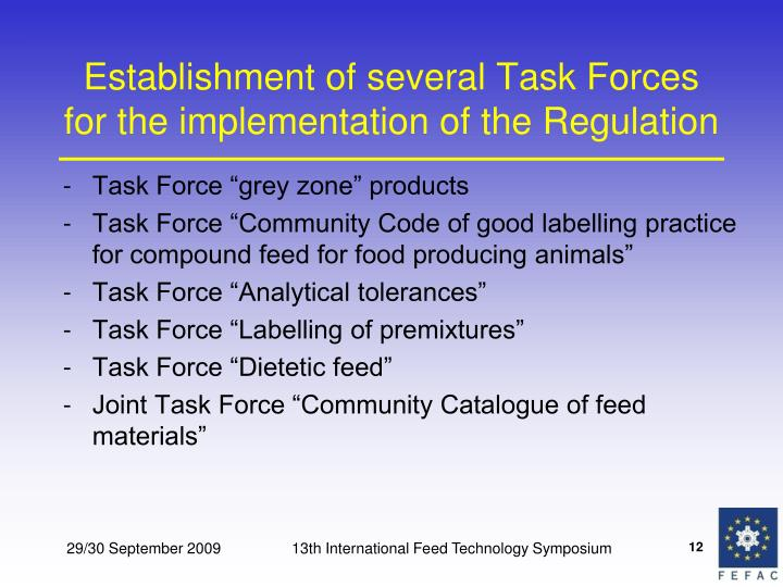 Establishment of several Task Forces for the implementation of the Regulation