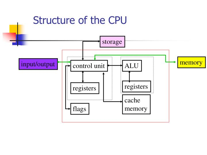 Structure of the CPU
