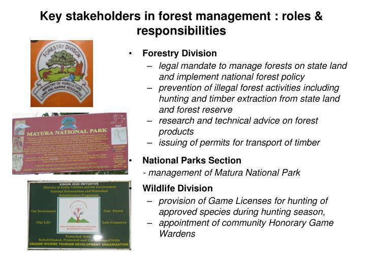 Key stakeholders in forest management : roles & responsibilities