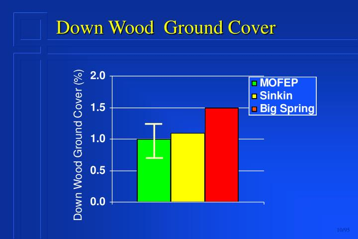 Down Wood  Ground Cover