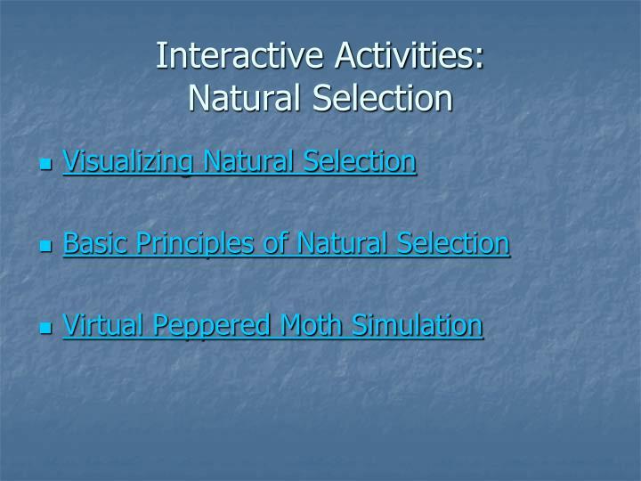Interactive Activities: