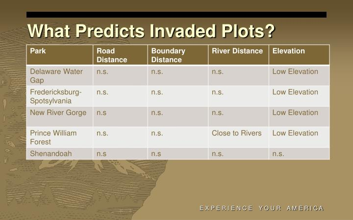 What Predicts Invaded Plots?