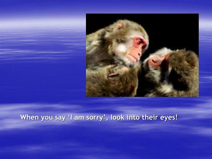 When you say 'I am sorry', look into their eyes!