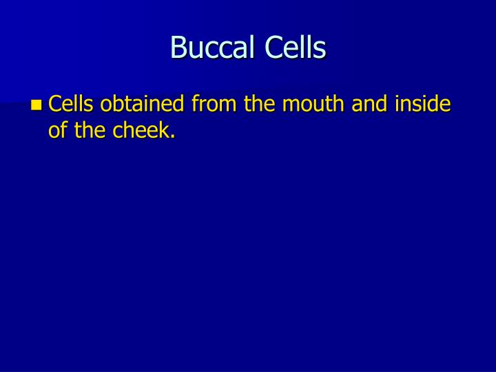 Buccal Cells