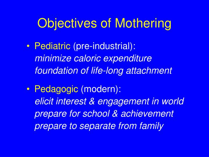 Objectives of Mothering