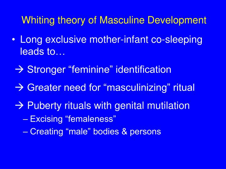 Whiting theory of Masculine Development