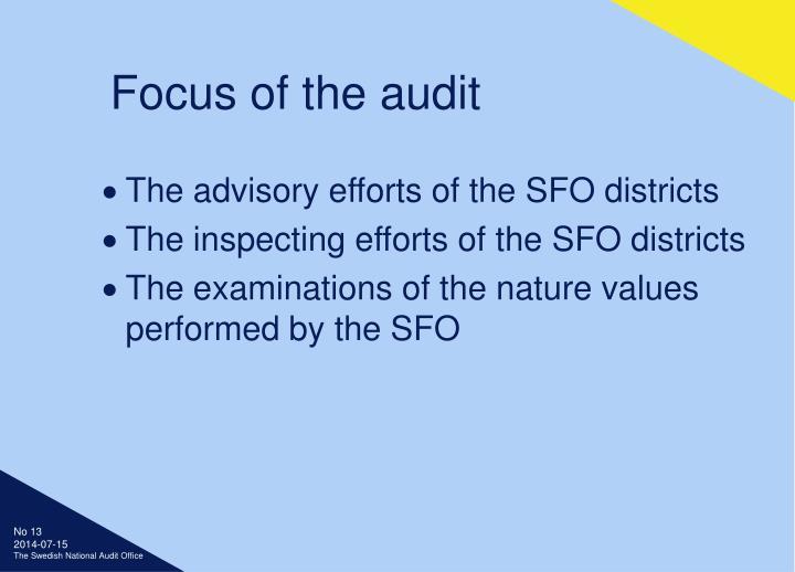 Focus of the audit