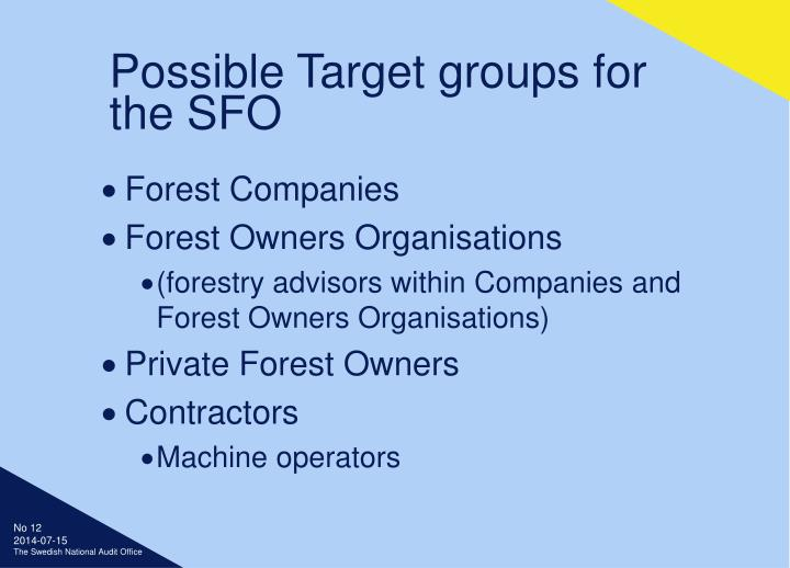 Possible Target groups for the SFO