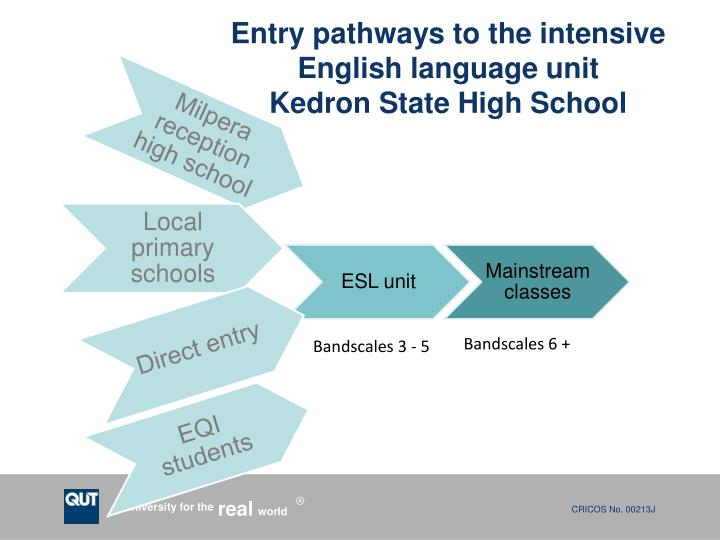 Entry pathways to the intensive English language unit