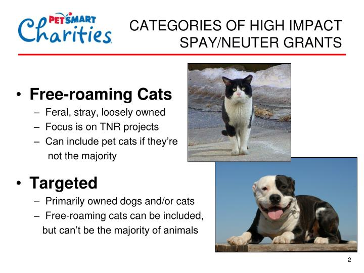 Neutering and spaying effects of health