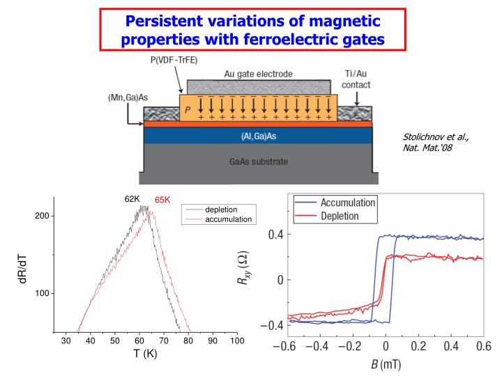 Persistent variations of magnetic properties with ferroelectric gates