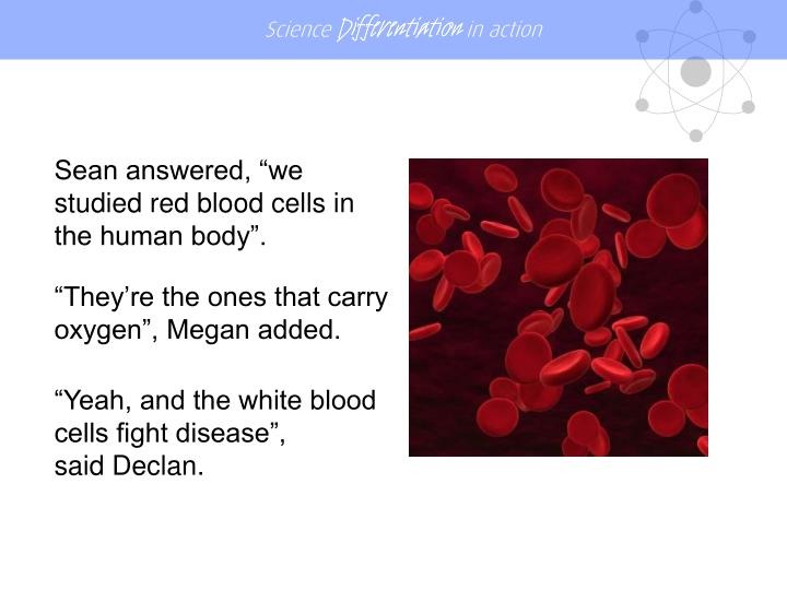 "Sean answered, ""we studied red blood cells in the human body""."
