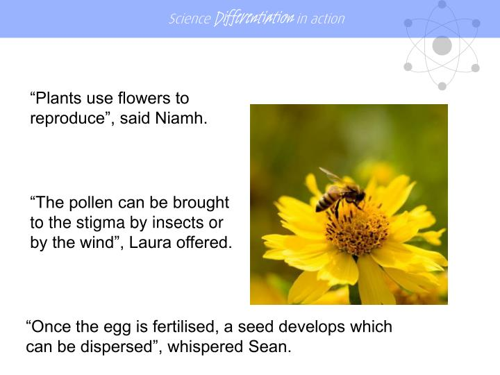 """Plants use flowers to reproduce"", said Niamh."