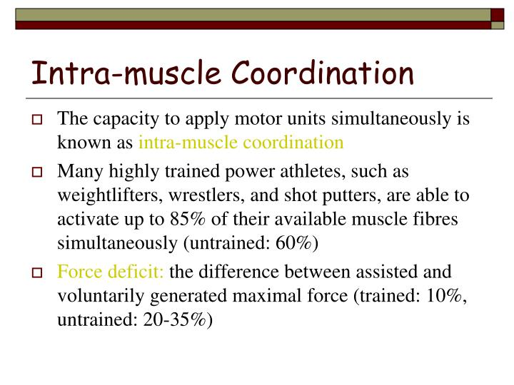 Intra-muscle Coordination