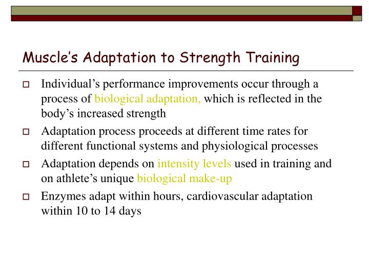 Muscle's Adaptation to Strength Training