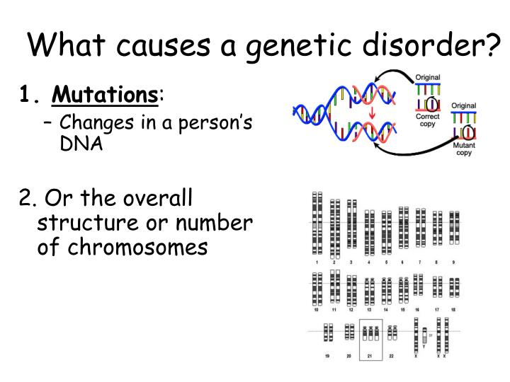What causes a genetic disorder?