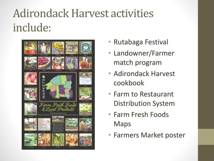 Adirondack Harvest activities include: