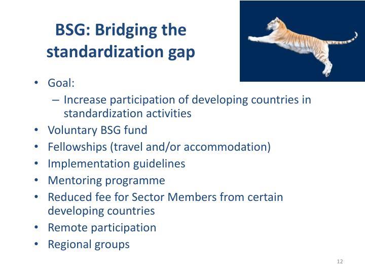 BSG: Bridging