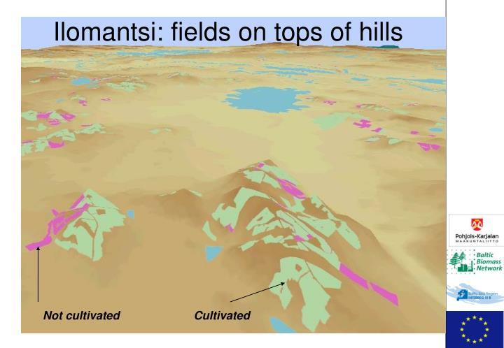 Ilomantsi: fields on tops of hills