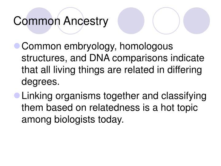 Common Ancestry