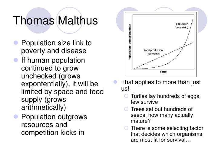 Population size link to poverty and disease
