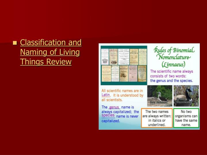 Classification and Naming of Living Things Review
