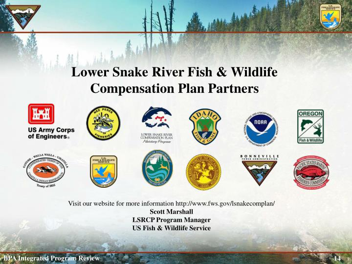 Lower Snake River Fish & Wildlife