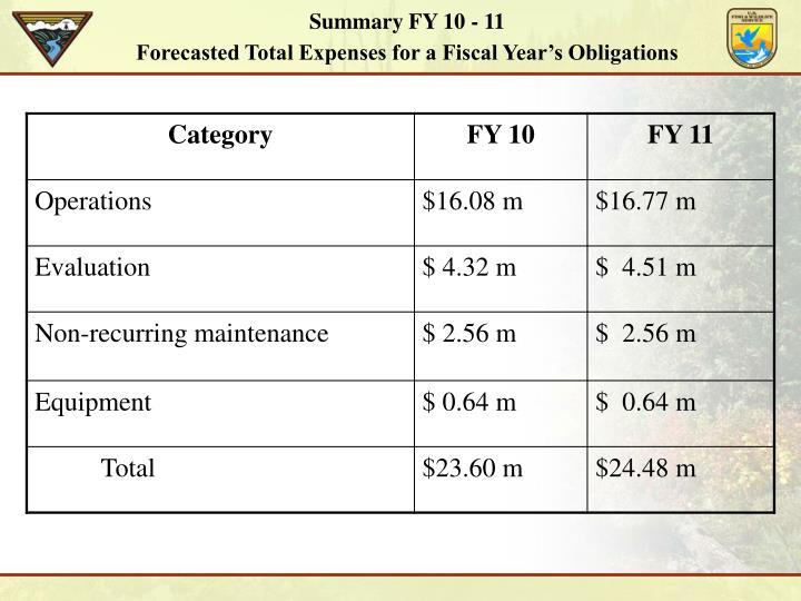 Summary FY 10 - 11