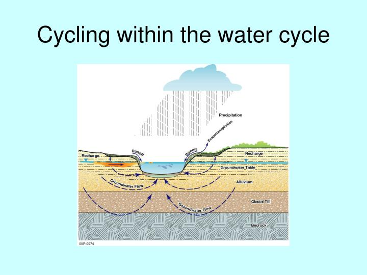 Cycling within the water cycle