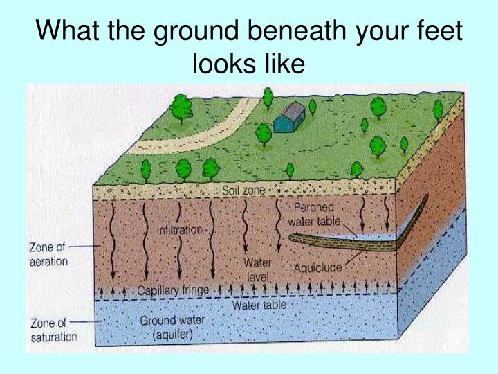 What the ground beneath your feet looks like