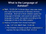 what is the language of ashdod