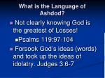 what is the language of ashdod1