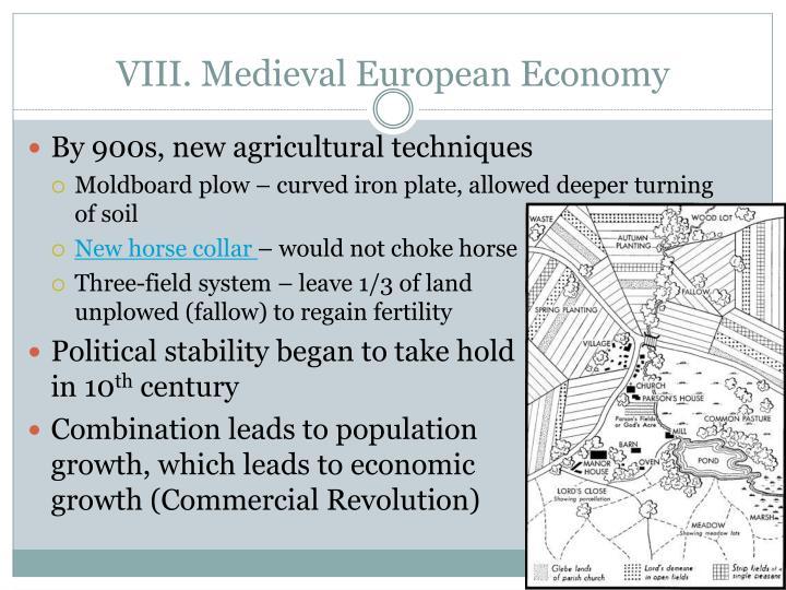 VIII. Medieval European Economy