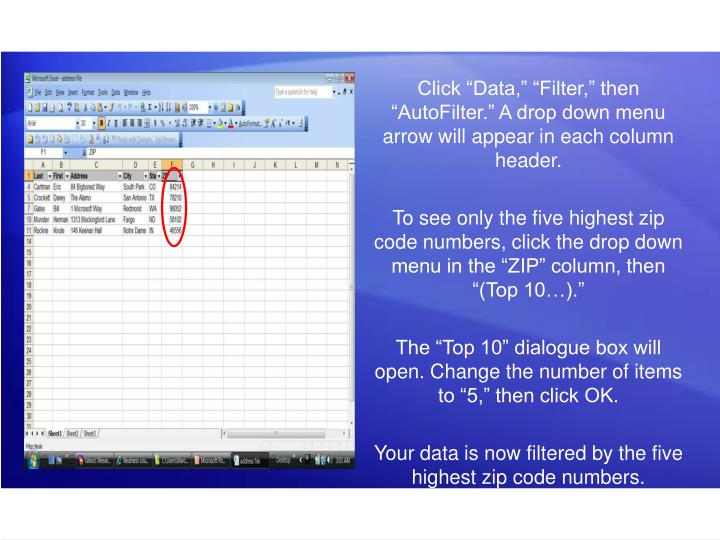 "Click ""Data,"" ""Filter,"" then ""AutoFilter."" A drop down menu arrow will appear in each column header."