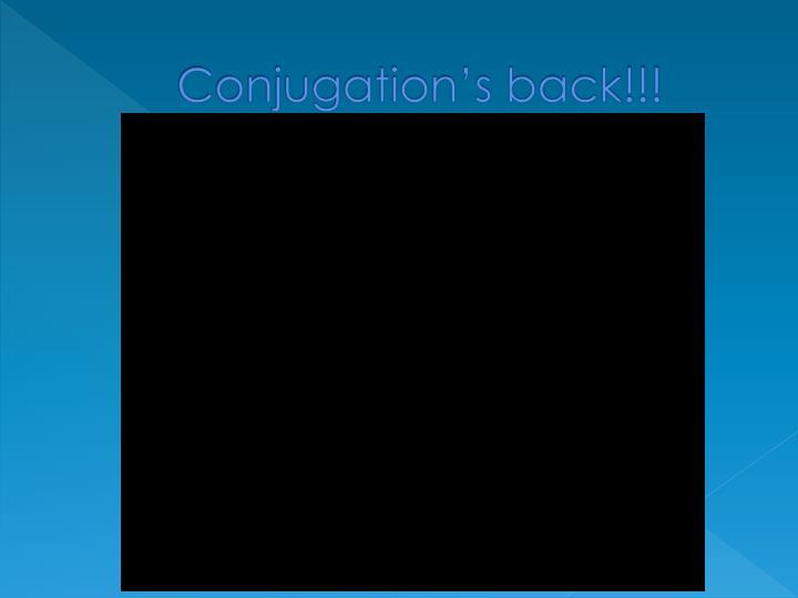 Conjugation's back!!!